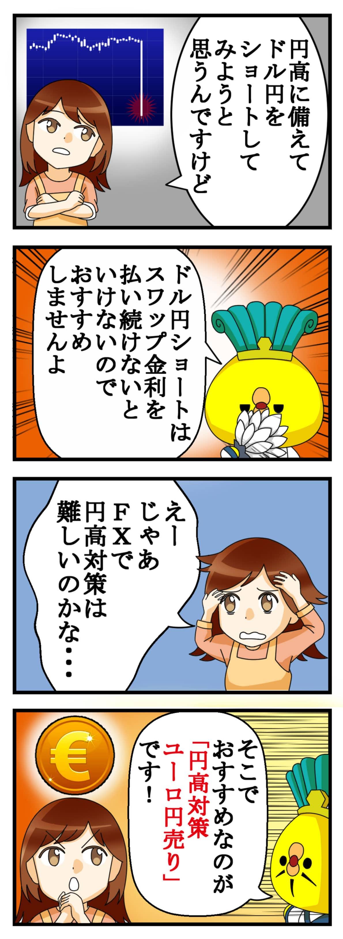 円高対策ユーロ円売り