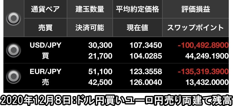 ドル円買いユーロ円売り両建て残高2020年12月
