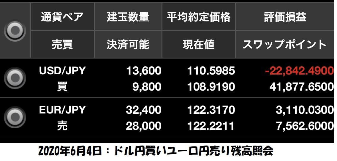 ドル円買いユーロ円売り両建て残高照会6月