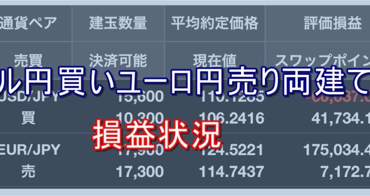 ドル円買いユーロ円売り両建て戦法損益状況:ハイリターン投資ROCK